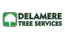 Delamere Tree Services Ltd